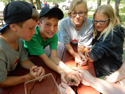 St Volodymyr Camp 2017 Photos (1134)